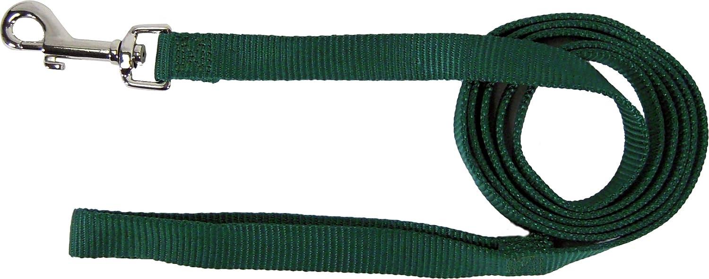 Hamilton 3 4 Inch Single Thick Nylon Lead with Swivel Snap, 4 Foot Long, Green