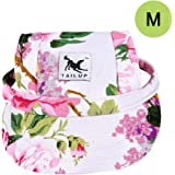 Cade Dog Hat-Pet Baseball Cap/ Dogs Sport Hat / Visor Cap with Ear Holes for Small Dogs