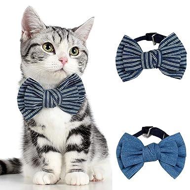 Amazon.com: MaxFox Collar de pajarita ajustable para mascota ...