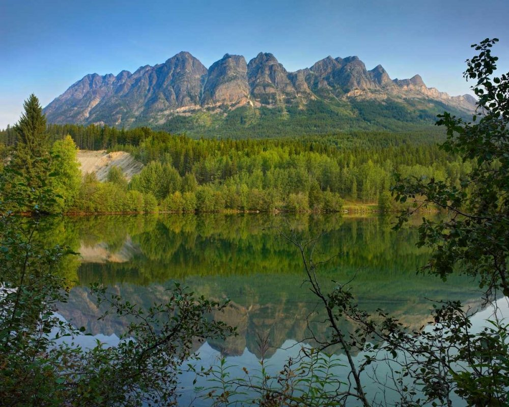 Yellowhead Mountain and Yellowhead Lake with boreal forest Mount Robson Provinvial Park British Co Poster Print by Tim Fitzharris 20 x 24