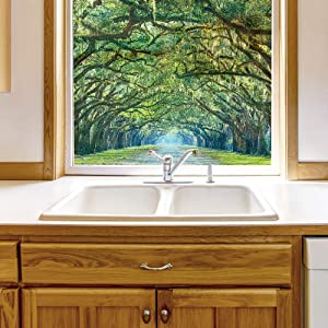 wall26 Window Film for Privacy Large Nature Scenery Decorative Glass Sticker for Office Home Meeting Room Bathroom Self Adhesive Anti UV Removable Flims - 28x36 inches