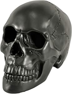 Myard HHS Heavy Cement Imitated Human Skull Art Decor Statue for Home & Garden, Bookends, Headset Stand (Black)