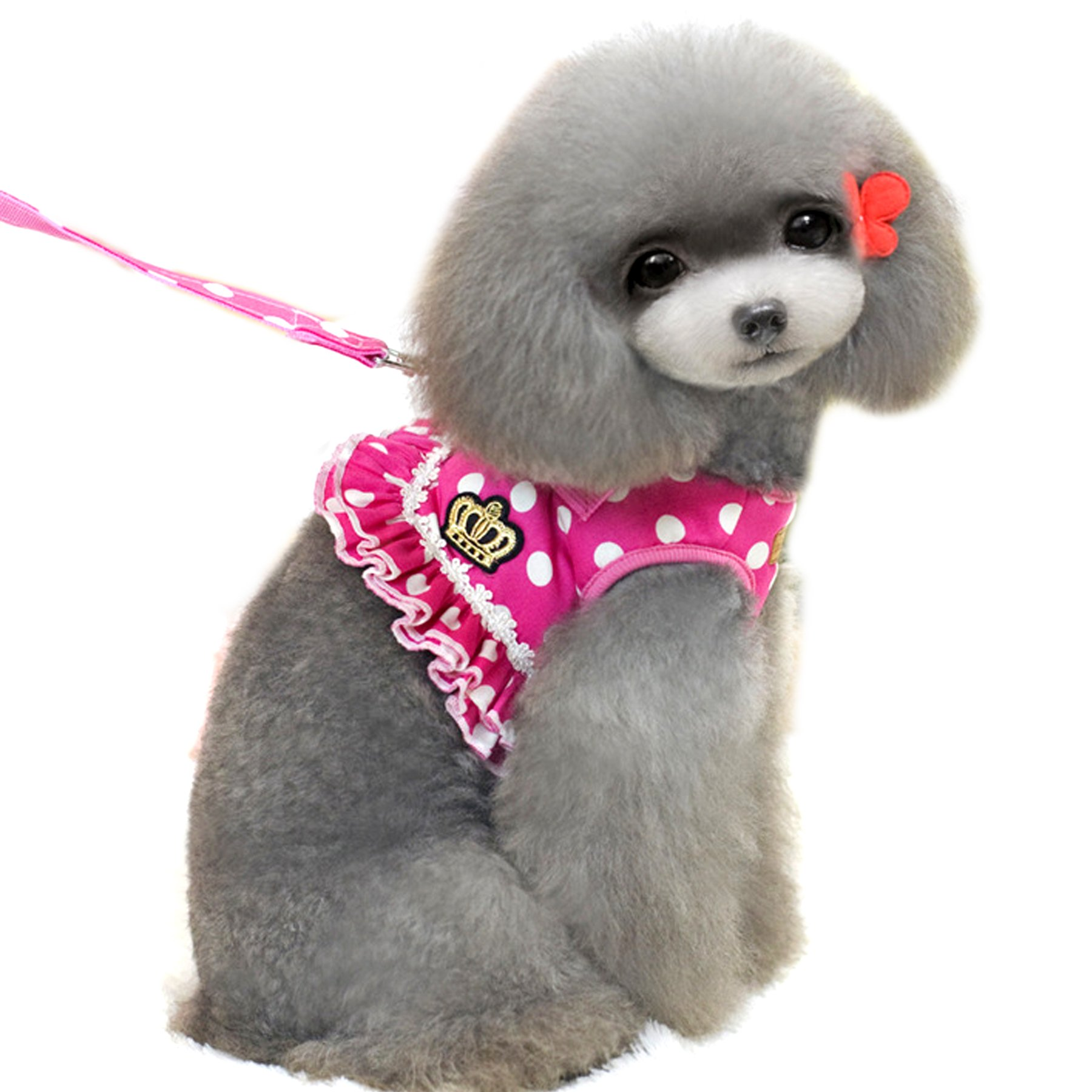 Alfie Pet by Petoga Couture - Ellie Step-in Harness and Leash Set - Color: Hot Pink, Size: Small
