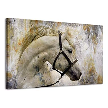 BYXART White Horse Pictures Framed Wall Decor Art Canvas Painting for Home Decoration Abstract Painting Animal Vintage Wall Posters Canvas Art Ready to Hang (Grey, 20x30in)