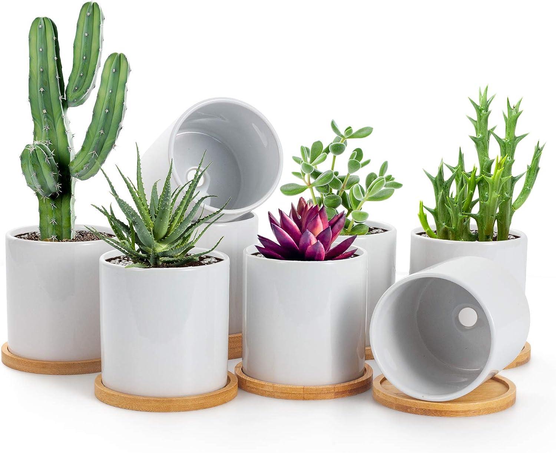 BUYMAX Succulent Plant Pots – 3.5 inch White Ceramic Flower Pot