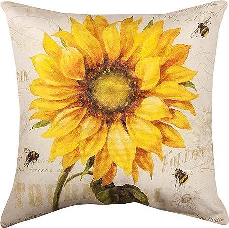 Amazon.com: Decorativos Almohadas – Almohada de girasol – 18 ...