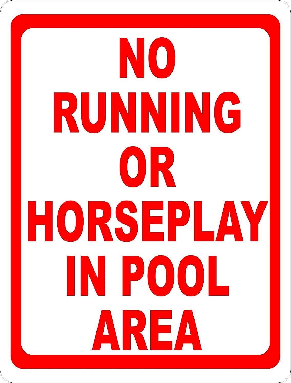 No Horseplay Metal Sign