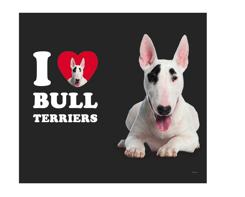 18-Ounce Tree-Free Greetings VB49024 I Heart Bull Terriers Artful Traveler Stainless Water Bottle White Tree Free