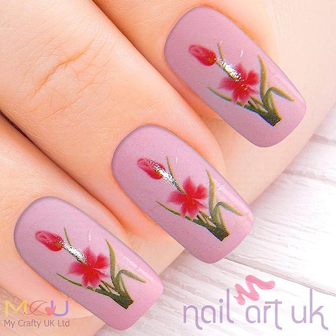 Color rosa y diseño de flor de lis de la flor de la recortada para ...