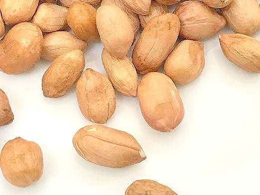 PEANUT SEEDS- Arachis hipogaea, semillas de avena, gober ...