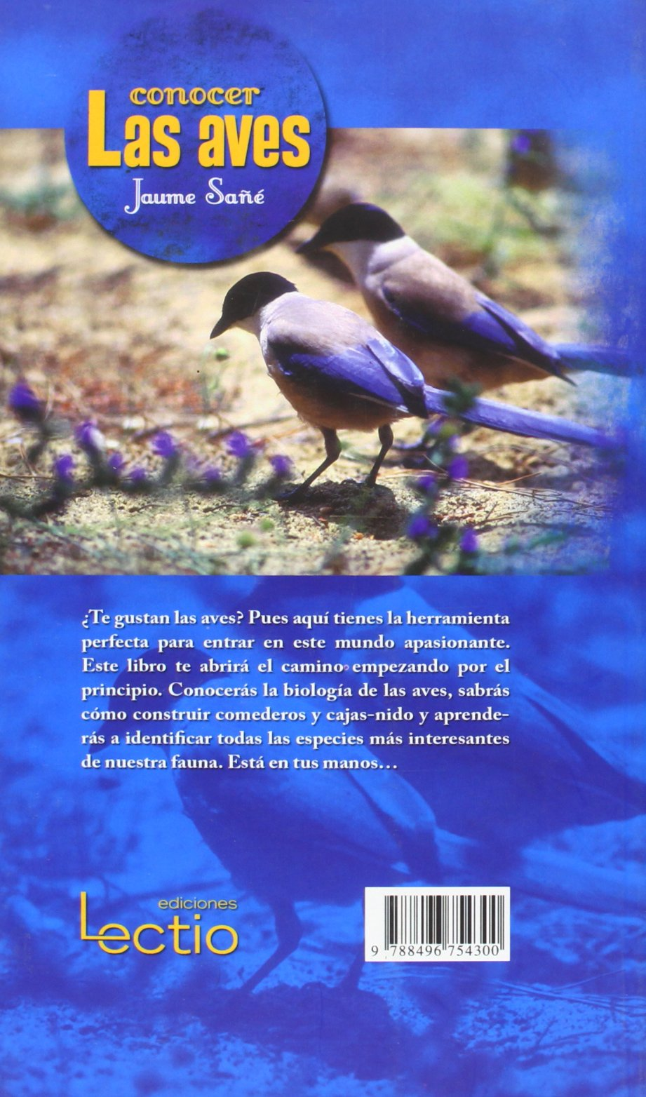 Conocer las aves (Spanish Edition): Jaume Sañé: 9788496754300: Amazon.com: Books