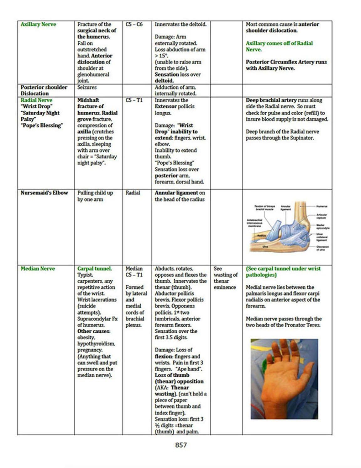 Boards Ready, USMLE Step 1, Step 2, Step 3: MD Tricia A