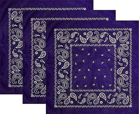 Latocos 3 Piezas Paisley Bandana Pañuelos Cabeza Pañuelos Cuello Deportivo Algodón Bandanas para Mujer Hombre (Púrpura): Amazon.es: Ropa y accesorios