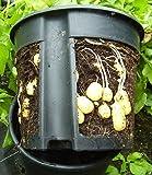 PotatoPot® Kartoffel-Pflanztopf, Kübel für Pflanzkartoffeln auf Balkon & Terrasse
