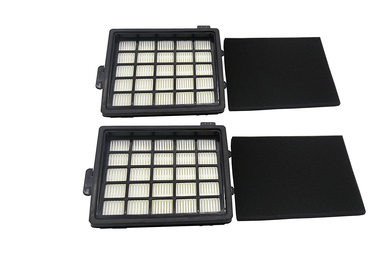 Lot de 2 Filtres HEPA de Rechange pour les Aspirateurs Philips EasyLife (Alternative à FC8071/01) Produit Authentique de Green Label