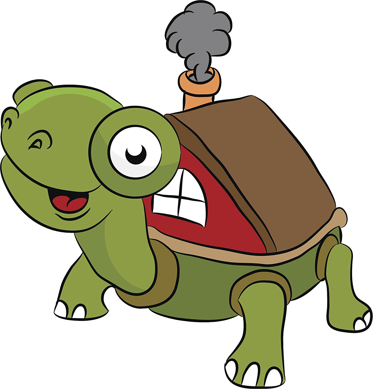 Amazon Com Cute Derpy Turtle With Shell Home House Cartoon Vinyl