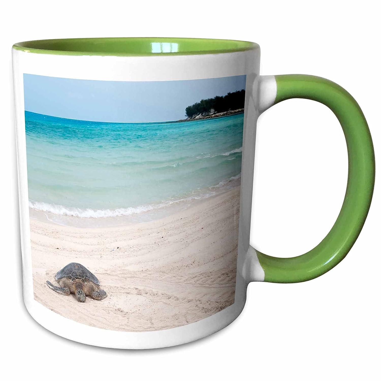 3dRose 143937/_2 Mug 15 oz Ceramic