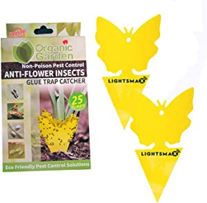 25 LIGHTSMAX Sticky Fruit Fly and Gnat Trap Yellow Sticky Bug Cards | Traps for Indoor/Outdoor Use - Insect Catcher for White Flies, Mosquitos, Fungus Gnats Flying Insects ● Disposable Glue Trappers