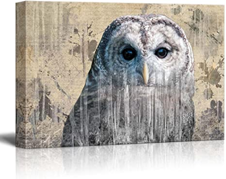 Modern Wall Decor An Owl 24x36 Double Exposure Rustic Canvas Wall Art