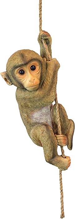 Design Toscano Chico the Chimpanzee Baby Monkey Hanging Animal Statue, 16 Inch, Polyresin, Full Color