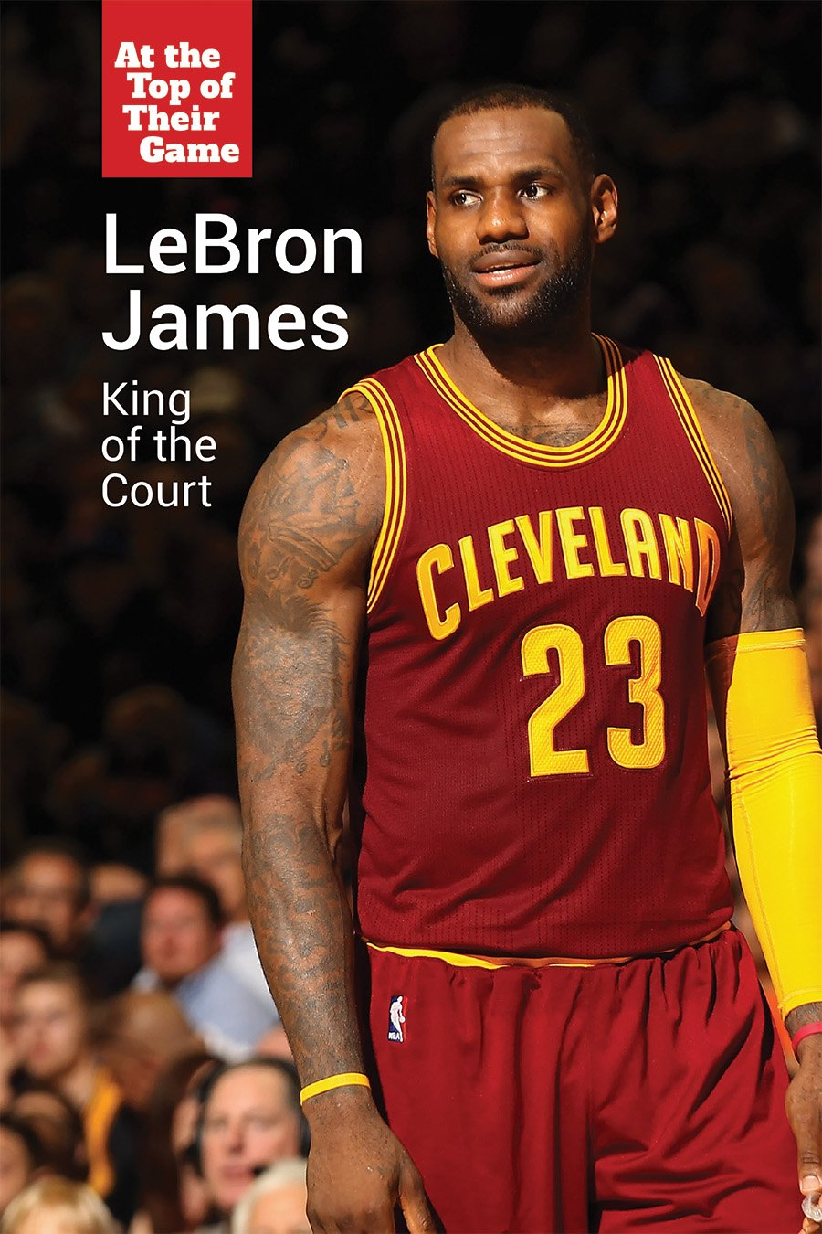 Lebron James: King of the Court (At the Top of Their Game) PDF