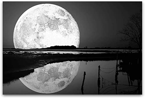 Startonight Canvas Wall Art Black and White Abstract Full Moon on The Water Landscape