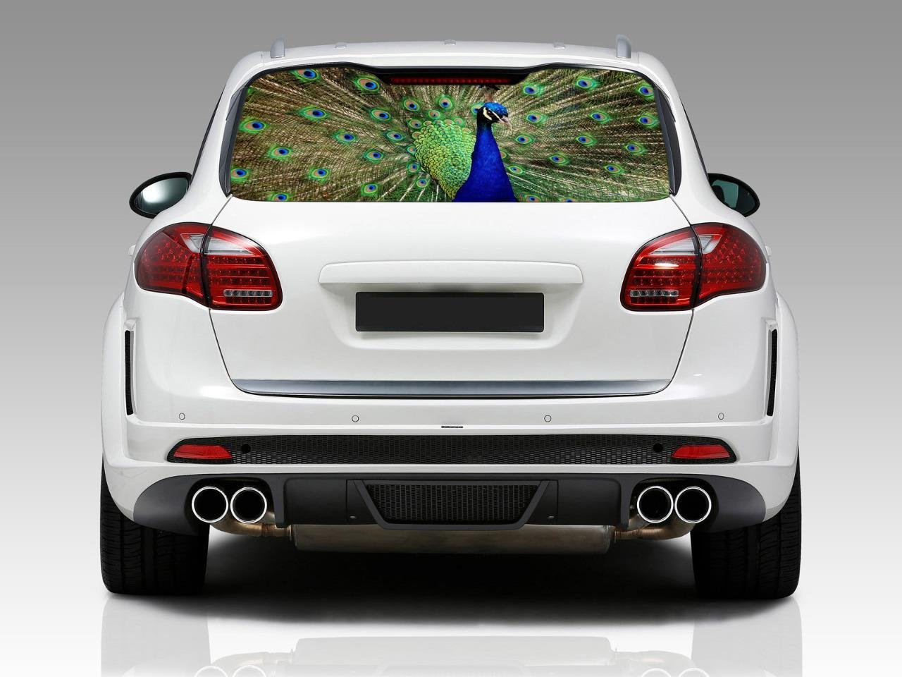 Amazon com peacock car rear window decal see through sticker car truck suv van animals 129 small home kitchen