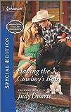 Having the Cowboy's Baby (Brighton Valley Cowboys)