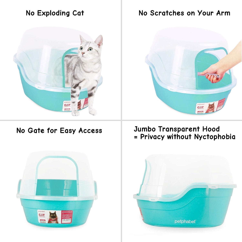 Petphabet Caja de Arena para Gato Casa de Baño XXL Múltiples Colores Disponibles: Amazon.es: Productos para mascotas