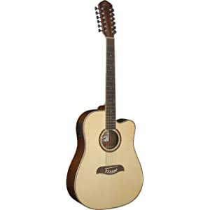 12-String Acoustic-Electric Guitar