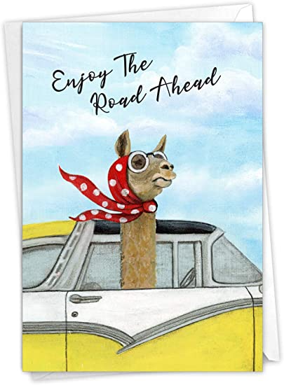 The Best Card Company - 1 Retirement Card with Envelope - Yellow Classic Automobile, Animal Car Ride Greeting Notecard - Driving Divas Llama C9276ARTG