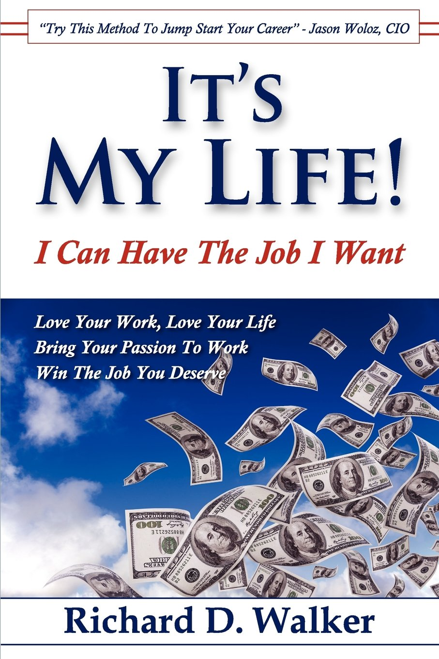 It's My Life! I Can Have The Job I Want ebook