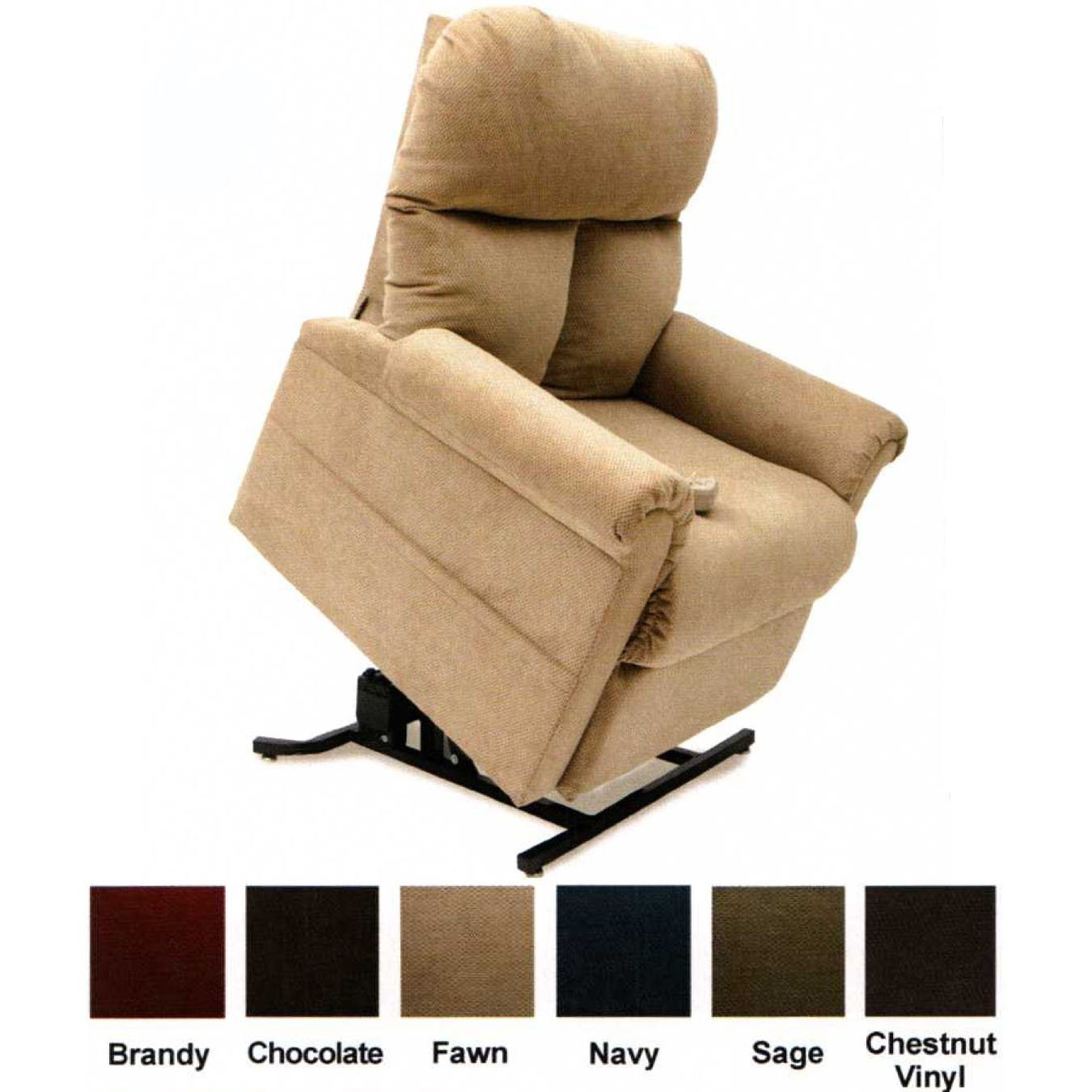Amazon.com Easy Comfort LC-100 Infinite Position Lift Chair - Fawn Health u0026 Personal Care  sc 1 st  Amazon.com & Amazon.com: Easy Comfort LC-100 Infinite Position Lift Chair ... islam-shia.org