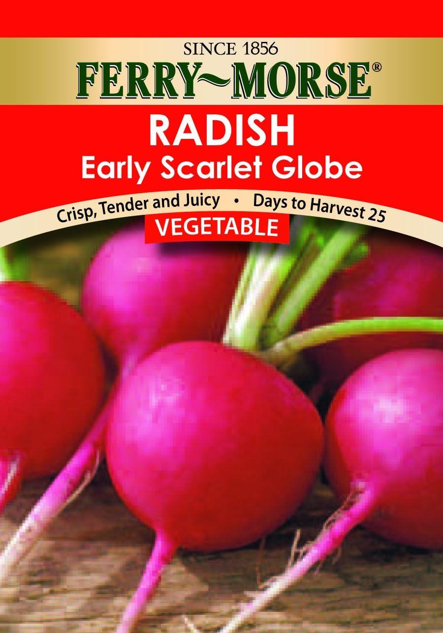 Ferry-Morse Seed Company Early Scarlet Globe Radish