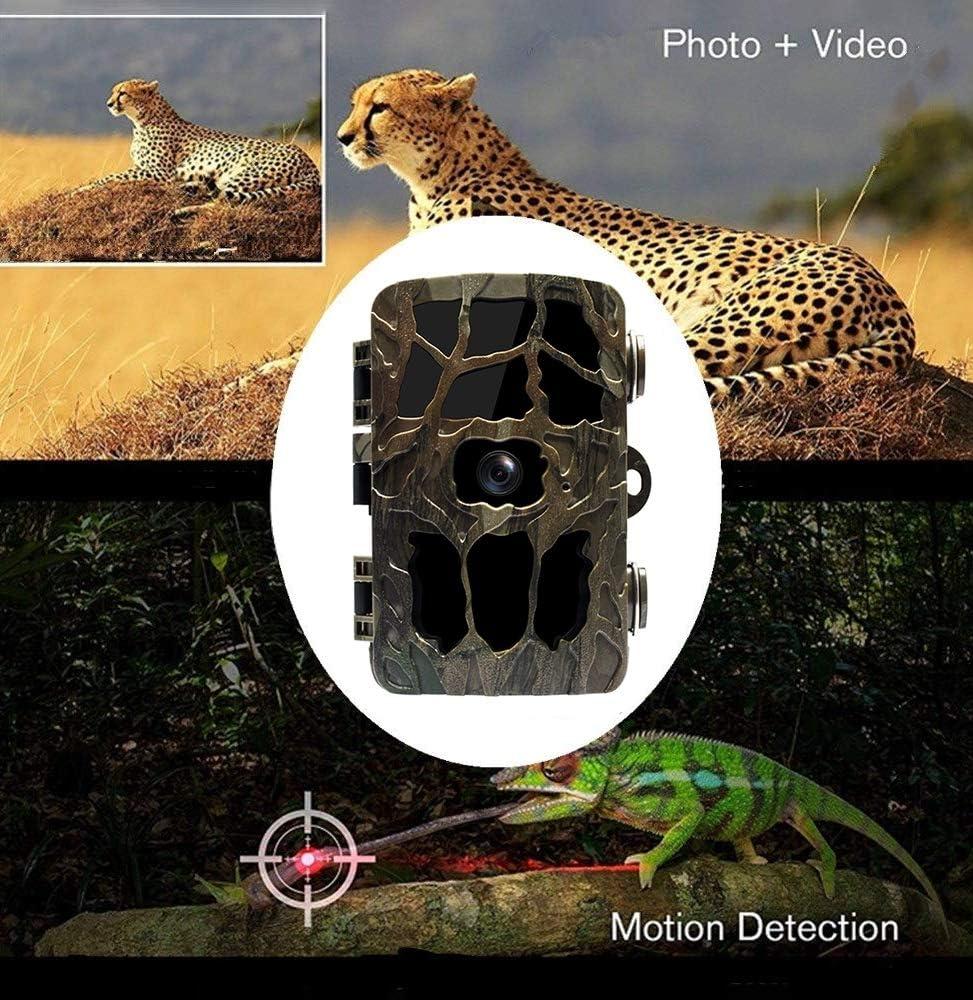 Include Pannelli Solari YTLJJ 2019 Nuove Fotocamera da Caccia 4K 20MP Fototrappola Infrarossi Fotografica Schermo da 2,4 Pollici Fototrappola Invisibili 940nm IR LEDs Visione Notturna 82ft//25m