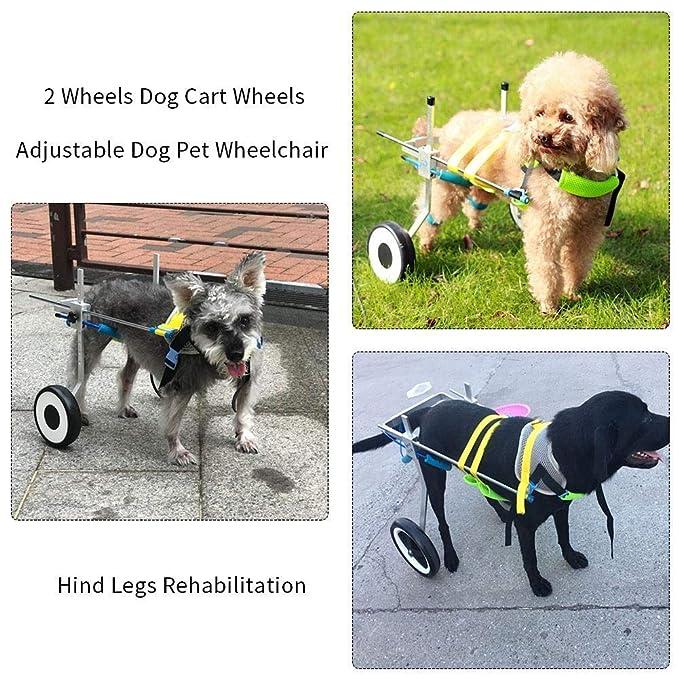 JKL Silla de ruedas para perros ajustable para mascotas - (2 ruedas) Ruedas del carro para perros Scooter para caminar para perros Discapacitados para ...