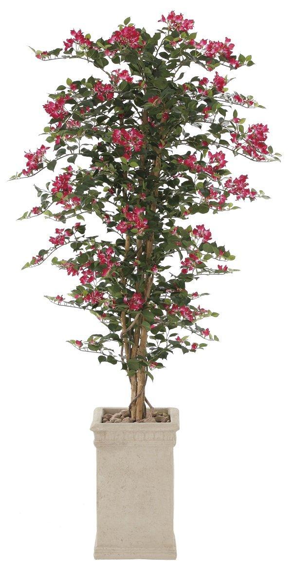 造花 観葉植物 「ブーゲンビリアEX 190cm」 光触媒(空気清浄) インテリアグリーン 鉢植え B0796TNJPF