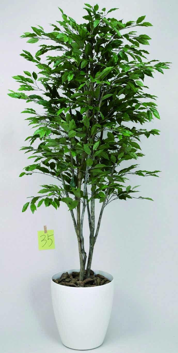 光触媒 ベンジャミンツリー1.6m【人工観葉植物】 B077VPGNHJ