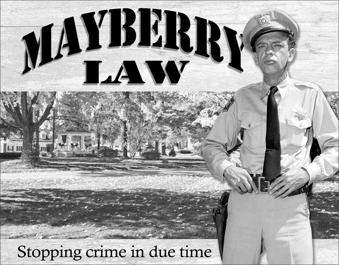"Desperate Enterprises The Andy Griffith Show - Barney Fife - Mayberry Law Tin Sign, 12.5"" W x 16"" H"