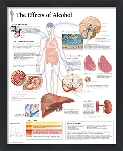amazon com the effects of alcohol framed medical educational