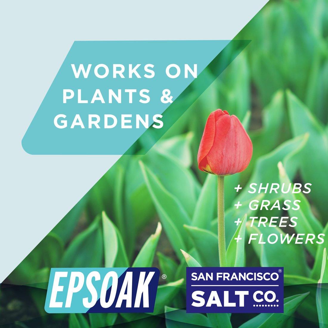 Epsoak Epsom Salt 5 lbs. Magnesium Sulfate USP by Epsoak (Image #5)