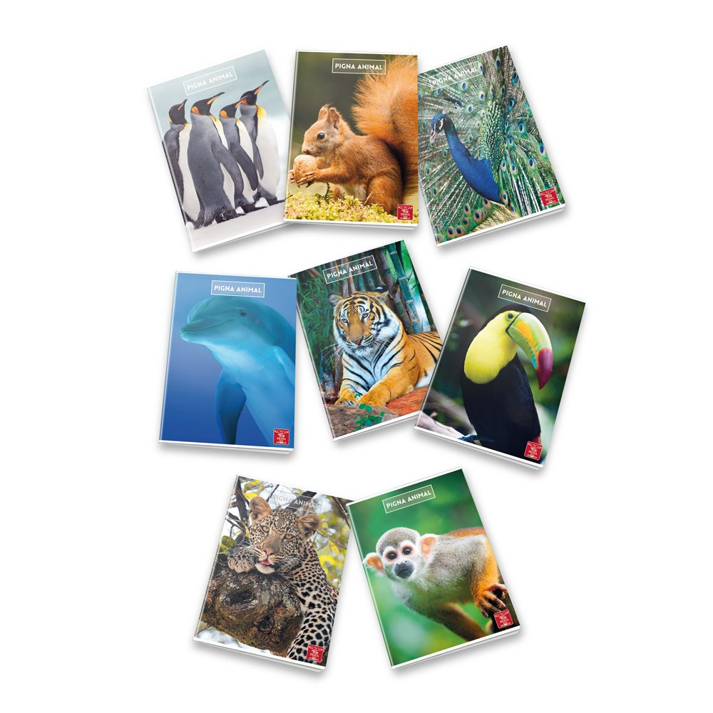 Pigna Animal 02243690Q quadretti 5 mm con margine per 2/° e 3/° elementare Rigatura 0Q Quaderno formato A4 Pacco da 10 Pezzi Carta 80g//mq