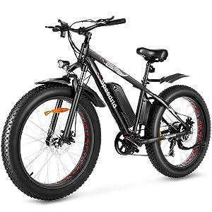 Speedrid Electric Bike 48V 500W