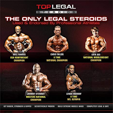 Anabolic Stack by Top Legal Steroids & Muscle Stacks | 1-Month Stacks  Supply | Natural