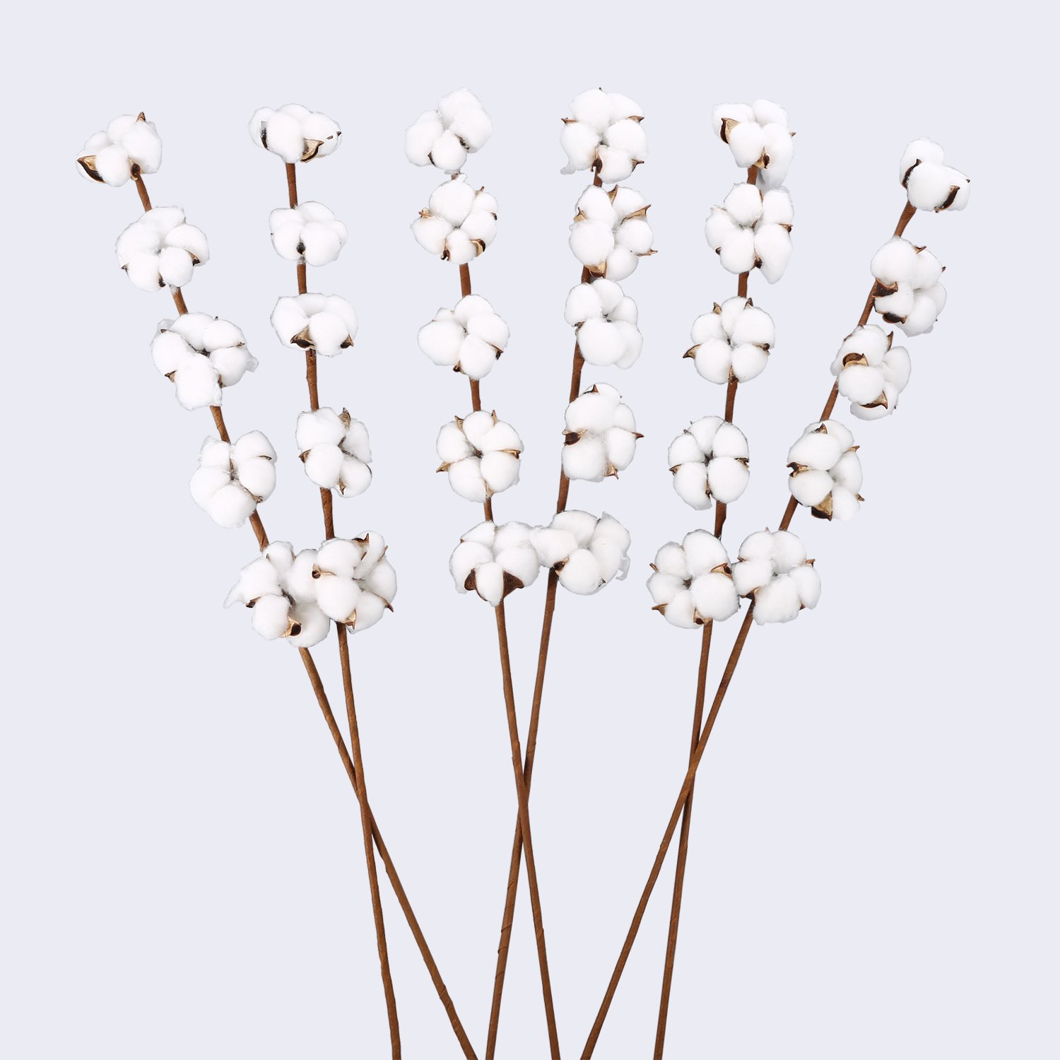 6 Pack 27 inch Cotton Stems Farmhouse Decor Rustic Style Vase Filler Floral Decoration Flower - VGIA by VGIA