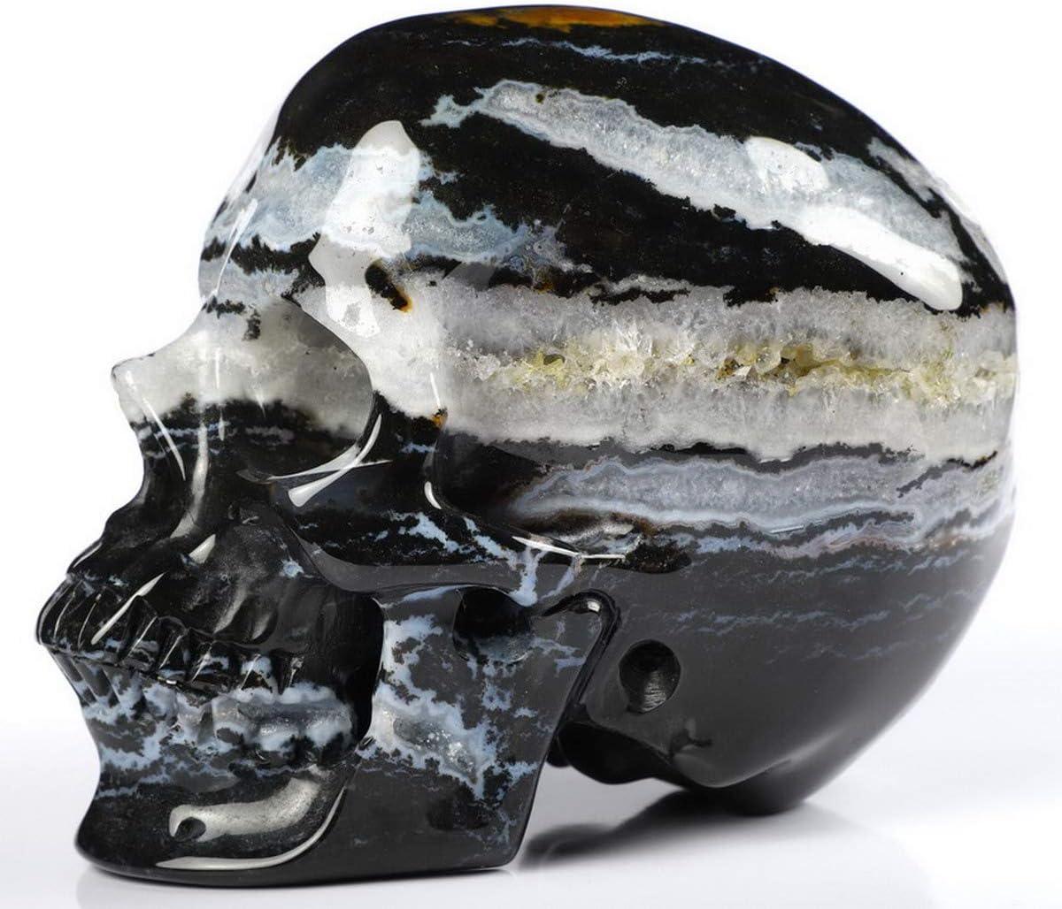 Crystal skulls ~ Zebra agate skulls ~ Crystal agate skulls ~ Skull decor