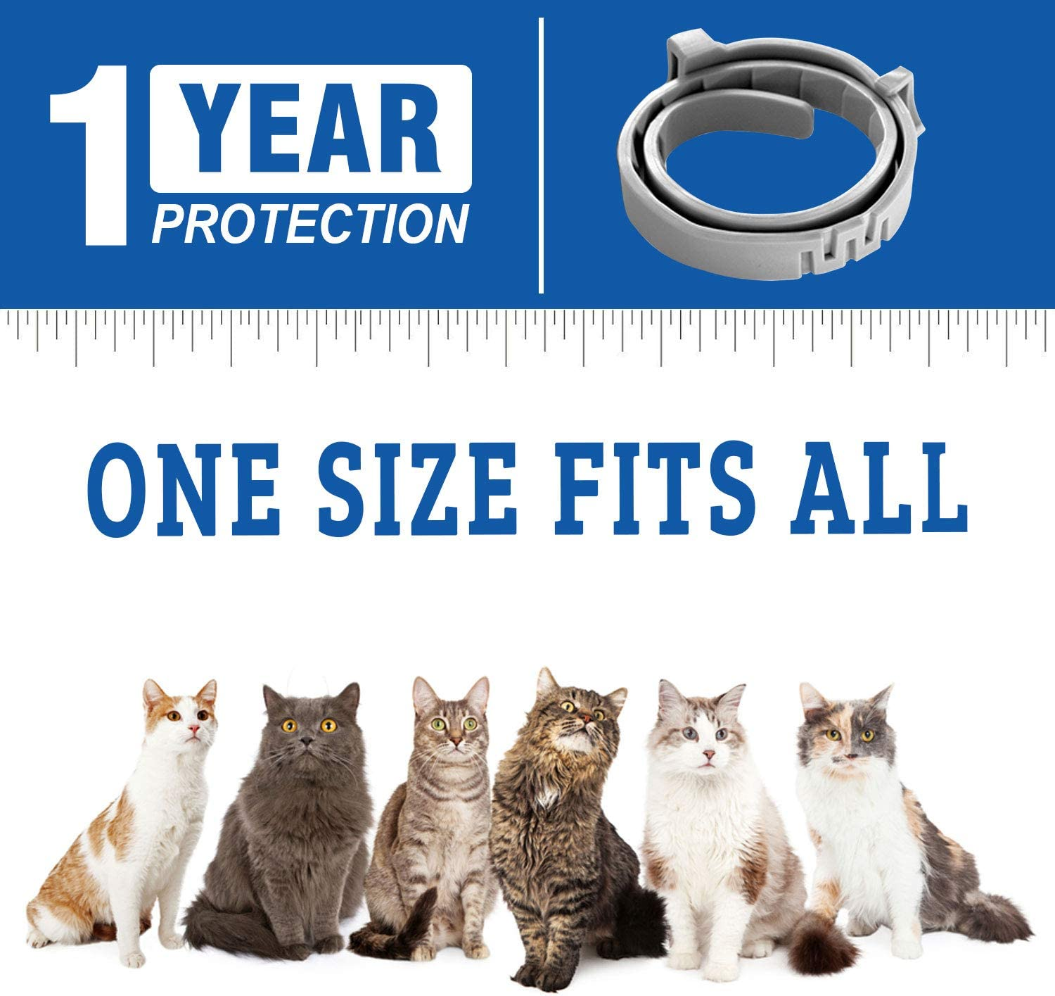 Allergy Free Flea Treatment for Cats- Adjustable Efficient and Safe Flea Collar 12 Months Protection from Fleas and Ticks COTENI Flea and Tick Collar for Cat