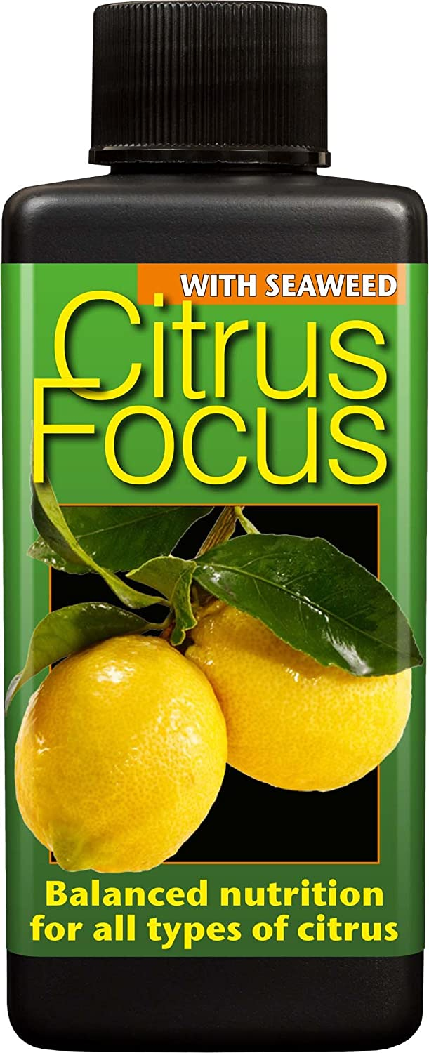 Citrus Focus Balanced Liquid Concentrated Fertiliser 100ml Growth Technology Ltd GTCIT100