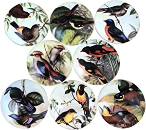 Set of 8 Colorful Birds Cabinet Knobs