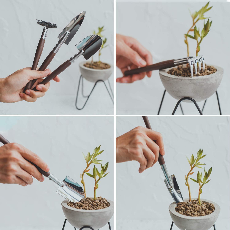 Pala y Palas -Ideal Jardiner/ía Regalo Mini Herramientas de jardiner/ía Conjunto de 3 Piezas AMOE 3 Piezas Juego Herramientas Jard/ín rastrillo
